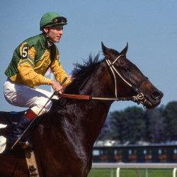Horseracer avatar